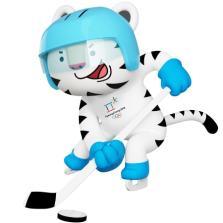 img-soohorang-ice-hockey