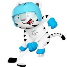 img-soohorang-ice-hockey